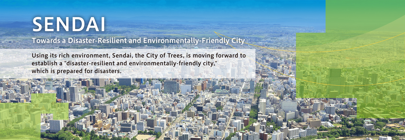 About Disaster-Resilient and Environmentally-Friendly City